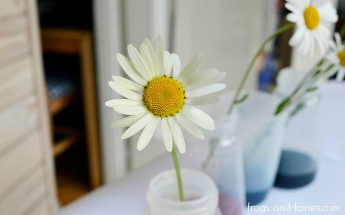 FFflowers3