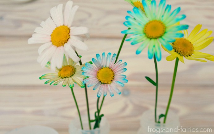 FFflowers6