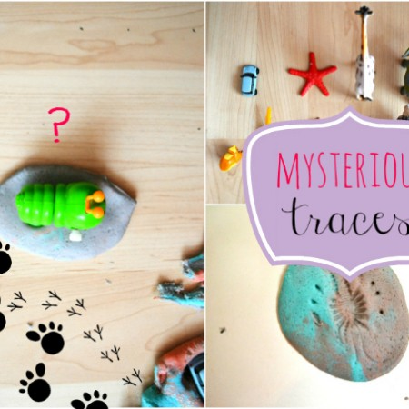 Mysterious-Animal-Traces