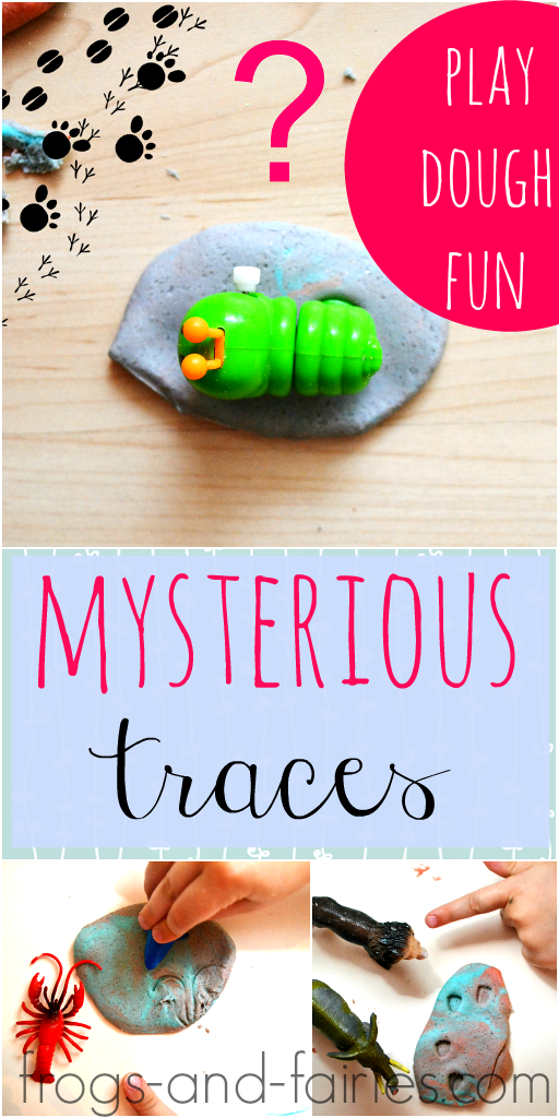 FF_Mysterious-Animal-Traces_pin