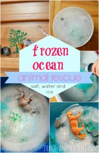 frozenocean.pin