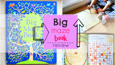 Photo of Big Maze Book Review
