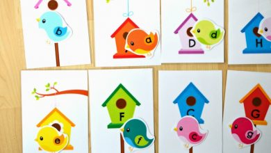 Photo of Birds and Houses Upper and Lower Case Letter Match