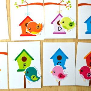 Birds & Houses Upper and Lower Case Letter Match