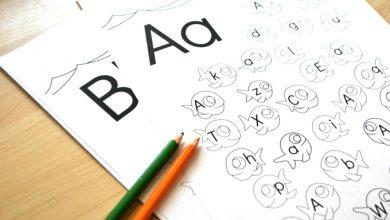 Photo of Fish Alphabet Upper & Lower Case Letter Find Worksheets
