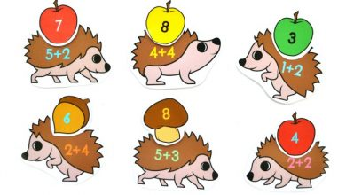 Photo of Hedgehog Addition to 10 Match