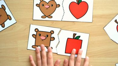 Photo of Bear and Apple Shape Matching Puzzles
