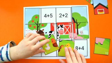 Photo of Addition and Subtraction to 20 Puzzles