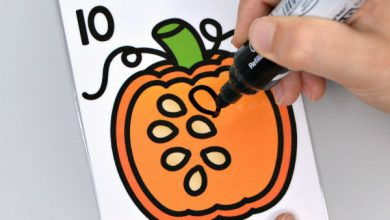 Photo of Pumpkin Seed Counting Cards