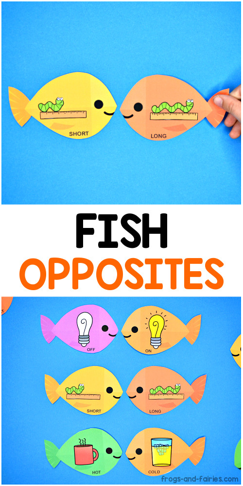 Fish Opposites Cards