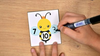Photo of Bee Number Bonds to 10