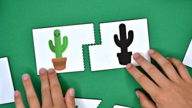 Photo of Cactus Shadow Match Puzzle and Clip Card Pack