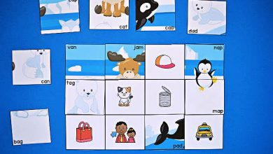 Photo of CVC Puzzles – Read and Match